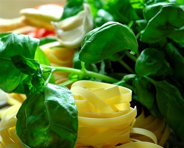 Fresh Pasta – Roll your own!